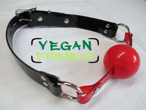 Vegan Friendly Medical Grade Silicone Locking Ball Gag